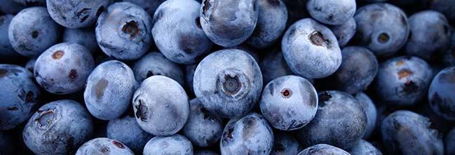 Antioxidantes, https://pixabay.com/es/ar%C3%A1ndanos-frutas-los-alimentos-690072/ - Licencia CC0