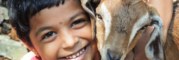 https://pixabay.com/en/lamb-girl-g-animal-child-sheep-1137852/